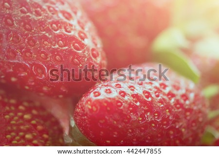 Strawberry background, sunny