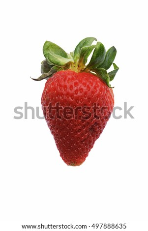 Strawberry (Fragaria x ananassa). Called Garden strawberry also. Image of strawberry isolated on white backgroud