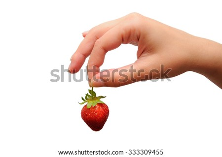 Strawberry in a hand on a white background. A female hand with strawberry - stock photo
