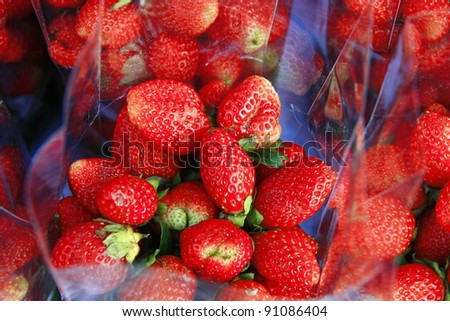 strawberry in clear bag, Chiang Mai, Thailand - stock photo