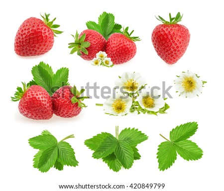 Strawberry isolated on white background - stock photo