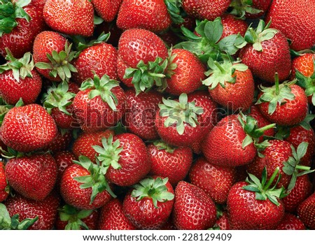 Strawberry raw fruit and vegetable backgrounds overhead perspective, part of a set collection of healthy organic fresh produce - stock photo