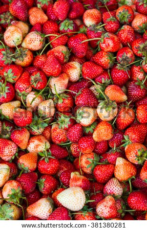 Strawberry's fresh and sweet, delicious and healthy. - stock photo