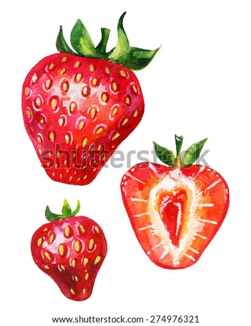 Strawberry set. Hand drawn illustration of berries isolated on white background - stock photo