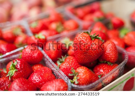 Strawberry shot on the market in the morning after the dew - stock photo