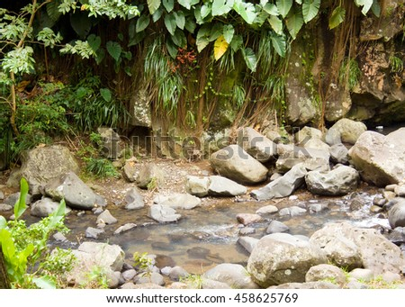 Stream and stones in the lush green forest of Dominica - stock photo