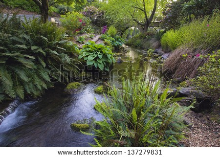 Stream Flowing Under the Wooden Bridge Arches with Ferns Hostas and Bog Plants at Crystal Springs Rhododendron Garden - stock photo