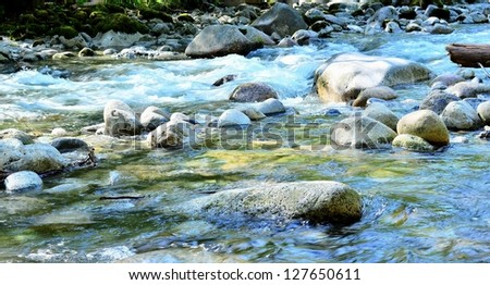 Stream flows calmly in the park - stock photo