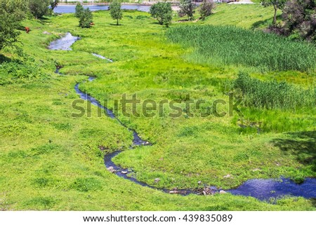 stream in a green valley, cow pasture - stock photo