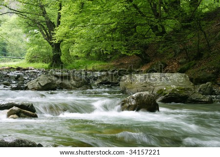 Stream in Bulgaria - stock photo