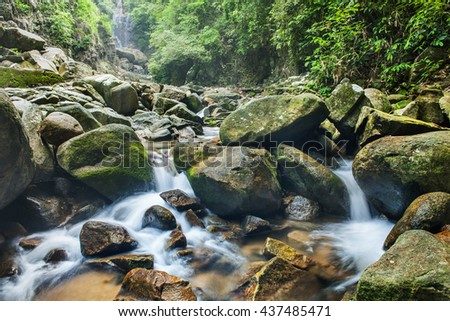 stream in deep forest