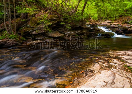 Stream in Ricketts Glen State Park, Pennsylvania.