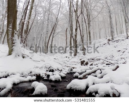 Stream in snowy forest during winter, many snow in nature