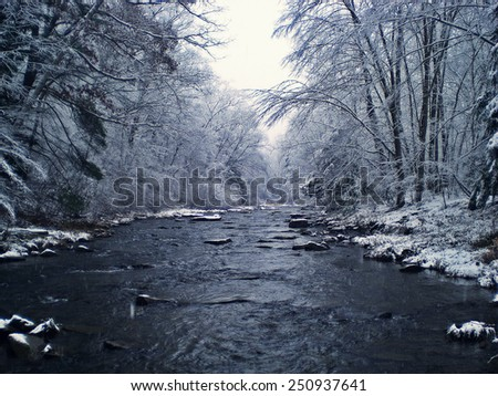Stream in Winter - stock photo