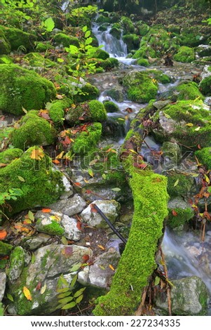 Stream of water flowing over the moss covered rocks in autumn - stock photo