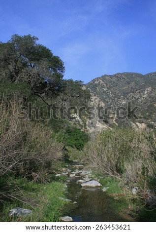 Stream running through a deep canyon in the mountains, California - stock photo
