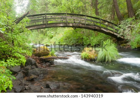 Stream under a wooden bridge in the forest - stock photo