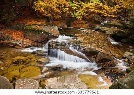 Stream with small waterfall in beautiful autumn scenery of the mountain forest.