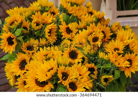 Street flower shop with beautiful sunflower bouquets - stock photo