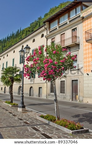 Street in a small mediterranean town with flower trees, Toscolano, Italy - stock photo
