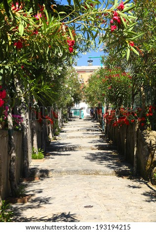 Street in Ravello, Amalfi Coast, Italy, Europe - stock photo