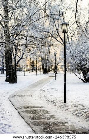Street lantern in winter snowy city park. Seasonal concept. - stock photo