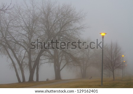 Street lights and fog setting the mood  in the park with walkway and park benh. - stock photo