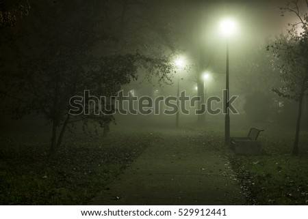 street near the plants at night shrouded in mist illuminated by lamplight