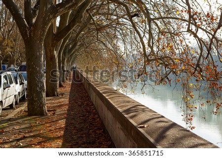 Street near the Tiber river in Rome, Italy. On sunny autumn or spring day. - stock photo