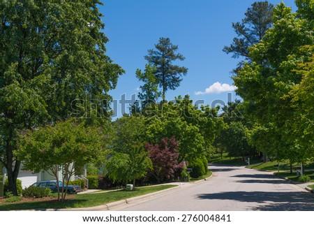 Street, summer time - stock photo