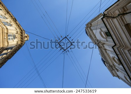 Street wires cross against a sky background