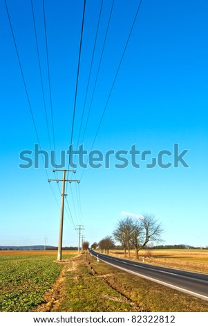 street with electric power lines and trees
