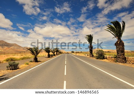 Street with Palm Trees and Volcano in the background. La Oliva, Fuerteventura Spain - stock photo