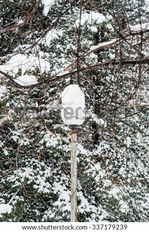 Streetlight Covered with Snow in Winter Forest  in Russia, Siberia, Novosibirsk, Akademgorodok