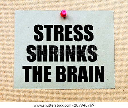 Stress Shrinks The Brain written on paper note pinned with red thumbtack on wooden board. Motivation conceptual Image - stock photo