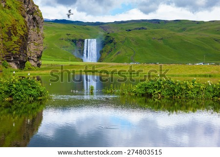 Striking reflection. Abounding waterfall Skogafoss reflected in a small pond. In the middle of the pond picturesque flower beds - stock photo