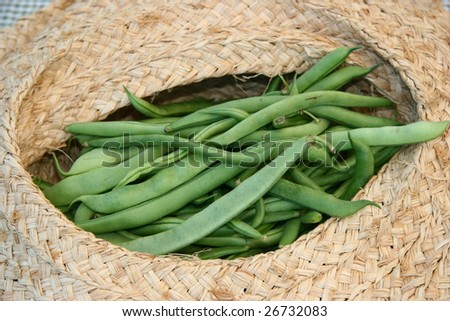 String Beans in a Basket