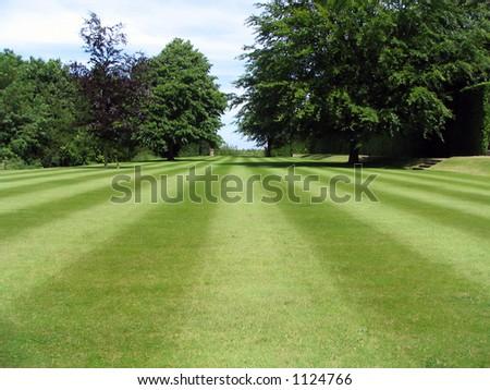 Striped Lawn - stock photo