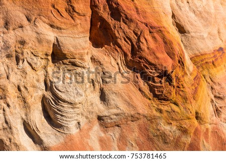 Striped sandstone wall with projections of different shapes in the Wave Canyon, North Coyote Buttes, Arizona, USA