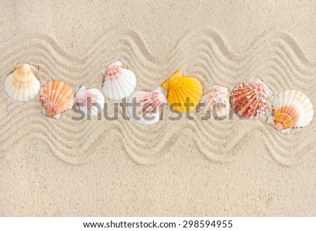 Striped sea shells on the sand,can be used as background - stock photo
