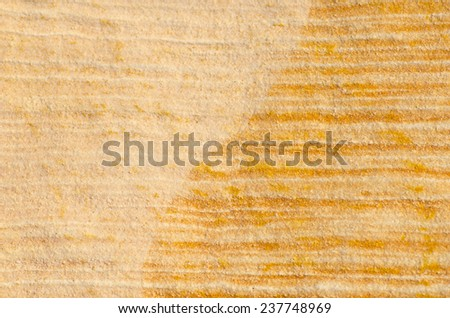 Striped wavy nature pattern and texture of sandy grain of orange rock outdoor, backdrop, background or wallpaper with copy space. - stock photo