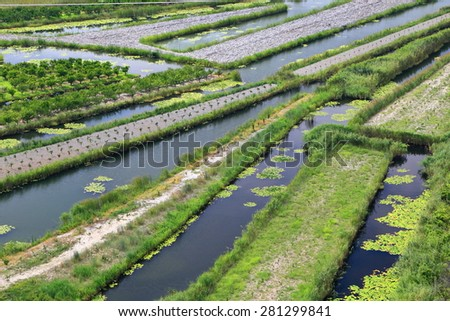 Stripes of water and land used in agriculture, Neretva delta, Croatia - stock photo