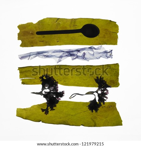 strips of fresh seaweed, and spoon  on white background