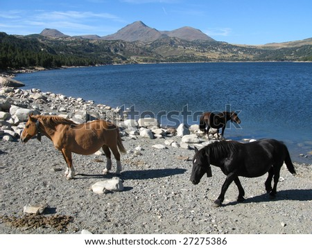 Stroll in images of the desert and lake of Carlit, Catalan country, France