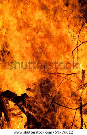Strong fire from the tree branches - stock photo