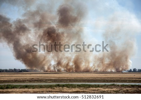 Strong prairie fire with large clouds of choking smoke erupted in southern steppe during the summer drought. The line of fire is coming to town houses. Ecological catastrophy