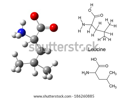 Structural model of leucine molecule on white background, 3d illustration - stock photo