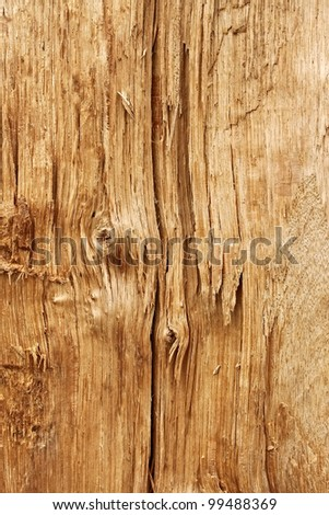 Structure of a new wooden broken log with a knot and annual rings - stock photo