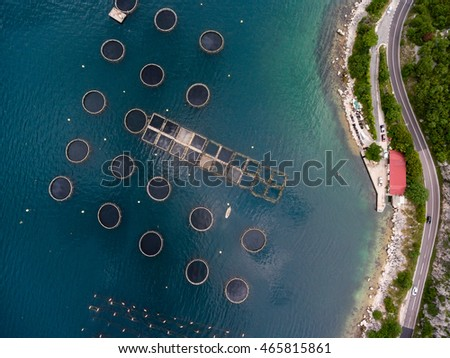 Structure of fish farm, aerial view. Boat for fish feeding. Aquaculture of Montenegro. 4K aerial view