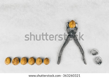 Struggle supress depress repress individual concept. Feeling Overwhelm. Lack, violation of human rights liberty. Tough nut to crack with a nutcracker business concept. Individuality and difference. - stock photo